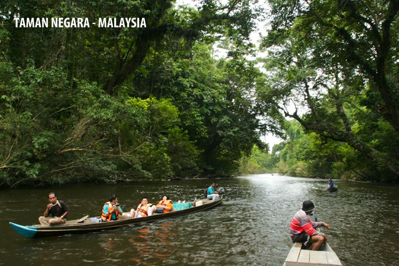 Image result for taman negara malaysia